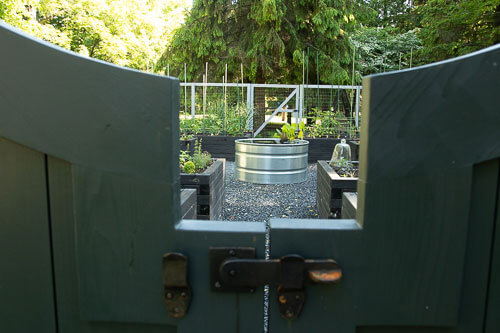 Stock tank for water plants